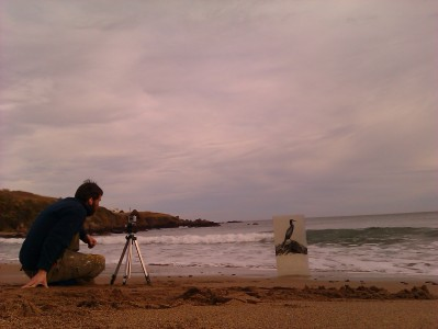 Recording Works on Coldingham Beach